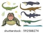 cartoon green crocodile danger... | Shutterstock .eps vector #592588274