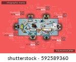 infograph brochure template... | Shutterstock .eps vector #592589360