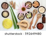 herbal skincare healing... | Shutterstock . vector #592649480