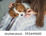 a puppy in the hands of women.... | Shutterstock . vector #592649600
