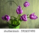 spring tulips in a basket on a... | Shutterstock . vector #592657490