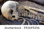 Ancient Human Skull And Bones....