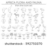 thin line africa flora and... | Shutterstock .eps vector #592753370