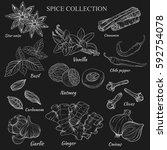 vector outline hand work of... | Shutterstock .eps vector #592754078