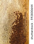 Small photo of Ambrosia. Honeycombs With Honey. Winter Forage For Bees. Texture, Background Series.