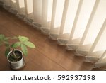 plant and blinds | Shutterstock . vector #592937198
