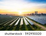 Solar Panels With The Sunny Sk...