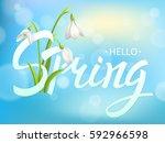 inscription spring time on... | Shutterstock .eps vector #592966598
