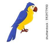 ara parrot standing still...   Shutterstock .eps vector #592977950