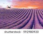 sun is setting over a beautiful ... | Shutterstock . vector #592980920