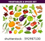 vegetables and spices set of... | Shutterstock .eps vector #592987130