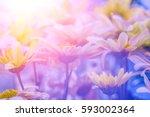 Blue Vintage Flower Background...