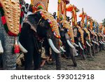 kerala  india   march  2016 ... | Shutterstock . vector #593012918