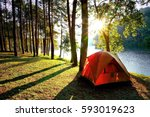 Orange Camping Tents In Pine...