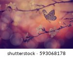 butterfly and cherry blossoms... | Shutterstock . vector #593068178
