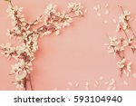 Image Of Spring White Cherry...