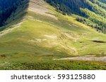 sheep on mountain pass | Shutterstock . vector #593125880