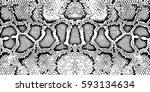 texture pattern black white... | Shutterstock .eps vector #593134634