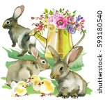 grey brown spring rabbits... | Shutterstock . vector #593180540