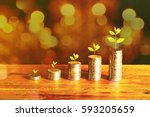 money growing plant step with... | Shutterstock . vector #593205659