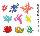 set of bright hand drawn corals.... | Shutterstock .eps vector #593243048