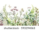 seamless rim. border with herbs ... | Shutterstock . vector #593294063