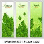 vertical banners with green... | Shutterstock .eps vector #593354309