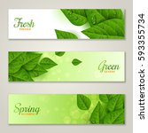 horizontal banners with green... | Shutterstock .eps vector #593355734
