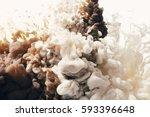 ink in water | Shutterstock . vector #593396648
