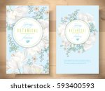 vector spring flower banners... | Shutterstock .eps vector #593400593