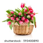 Red Tulip Flowers In A Basket...