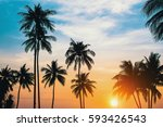 palm trees silhouettes during... | Shutterstock . vector #593426543