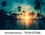 twilight on a tropical beach... | Shutterstock . vector #593432588