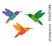 set three small colorful bird... | Shutterstock .eps vector #593437688