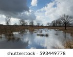 Clouds Above A Dutch Peat Moor