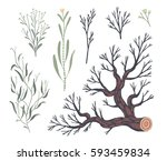 floral decorative elements.... | Shutterstock .eps vector #593459834