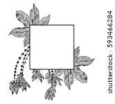 exotic flowers set. botanical... | Shutterstock .eps vector #593466284