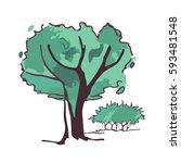 tree sketches | Shutterstock .eps vector #593481548