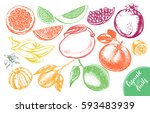 ink hand drawn set of different ... | Shutterstock .eps vector #593483939