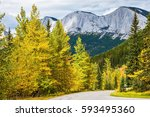 the warm indian summer in  the... | Shutterstock . vector #593495360