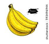 banana bunch vector drawing.... | Shutterstock .eps vector #593496944