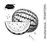 watermelon and slice vector... | Shutterstock .eps vector #593497094