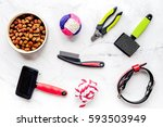 Stock photo concept pet care and training on stone background top view 593503949