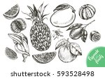 ink hand drawn set of different ... | Shutterstock .eps vector #593528498