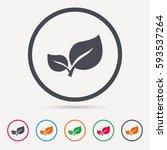 leaf icon. fresh organic...   Shutterstock .eps vector #593537264