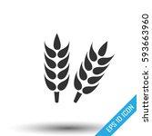 ears of wheat. growing ears... | Shutterstock .eps vector #593663960