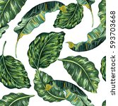 tropical leaves  jungle leaf... | Shutterstock .eps vector #593703668