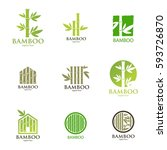 Bamboo Nature Logo