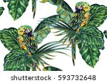 seamless floral pattern... | Shutterstock .eps vector #593732648