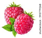 raspberry isolated on white... | Shutterstock . vector #593779268
